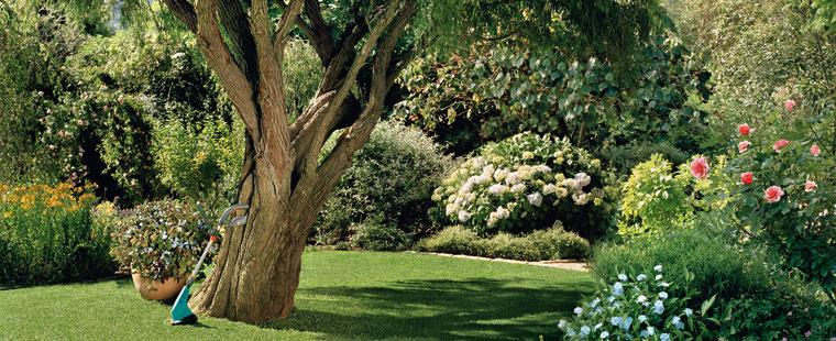 Gardena_lawn_care_GA350-0132